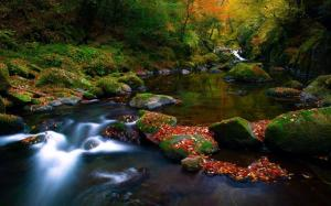 nature-landscapes_hdwallpaper_scenic-river-colors_15102 rivers