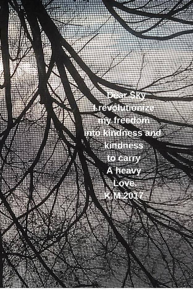 Dear Sky I revolutionize kindness into freedom 1 (2)