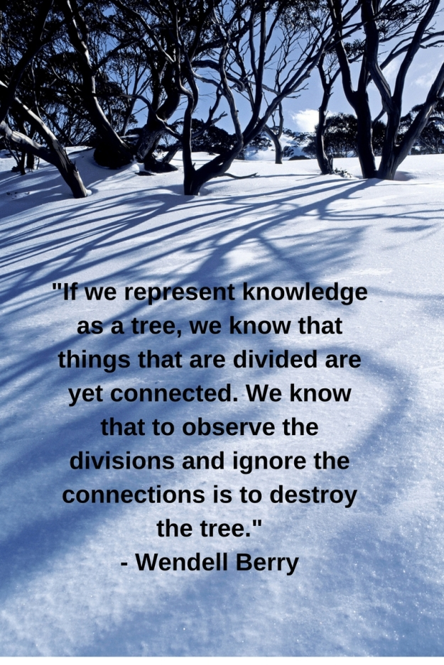 _If we represent knowledge as a tree, we know that things that are divided are yet connected. We know that to observe the divisions and ignore the connections is to destroy the tree._- W