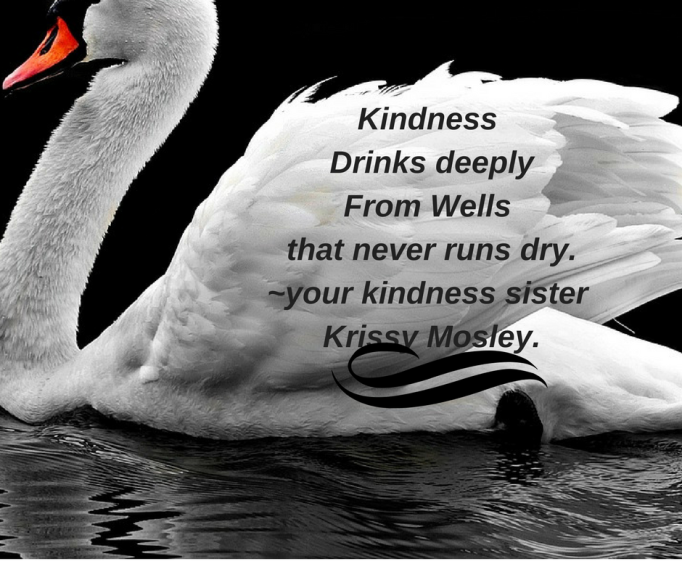 Kindness drinks deeplyfrom wells that never runs dry_your kindness sister Krissy Mosley.
